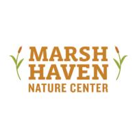 marsh-haven.png