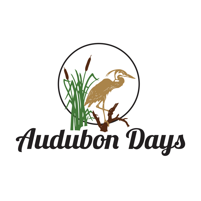 Image result for audubon days