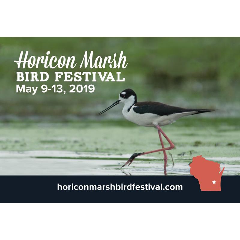 Horicon Marsh Bird Festival 2019