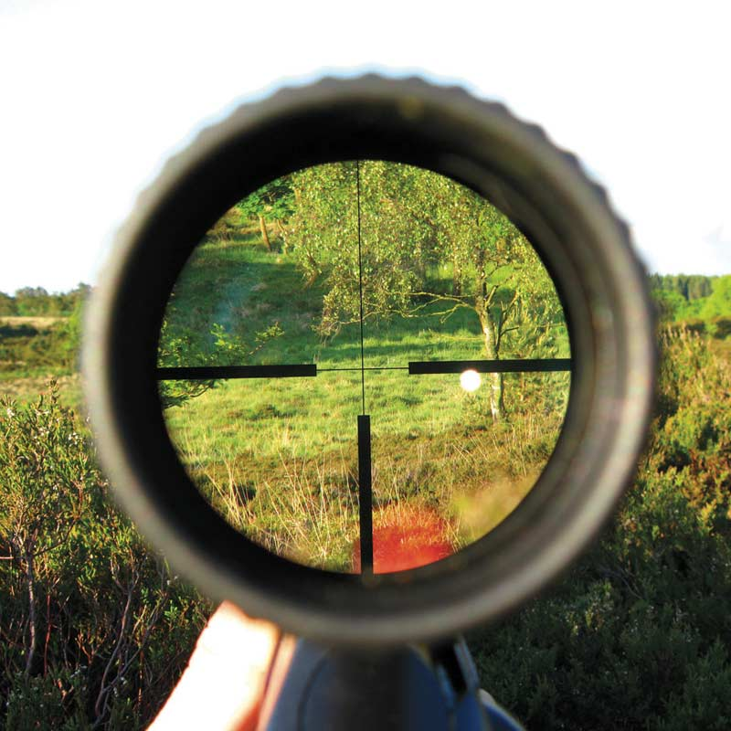 Hunting and Firearm Safety Tips